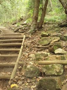 2 paths!