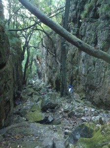 Myburgh Ravine